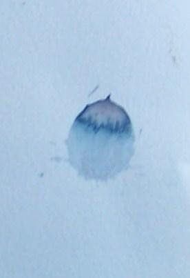 Paint drop 020